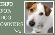 Information for dog owners