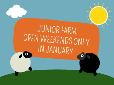 JUNIOR FARM OPENING TIMES